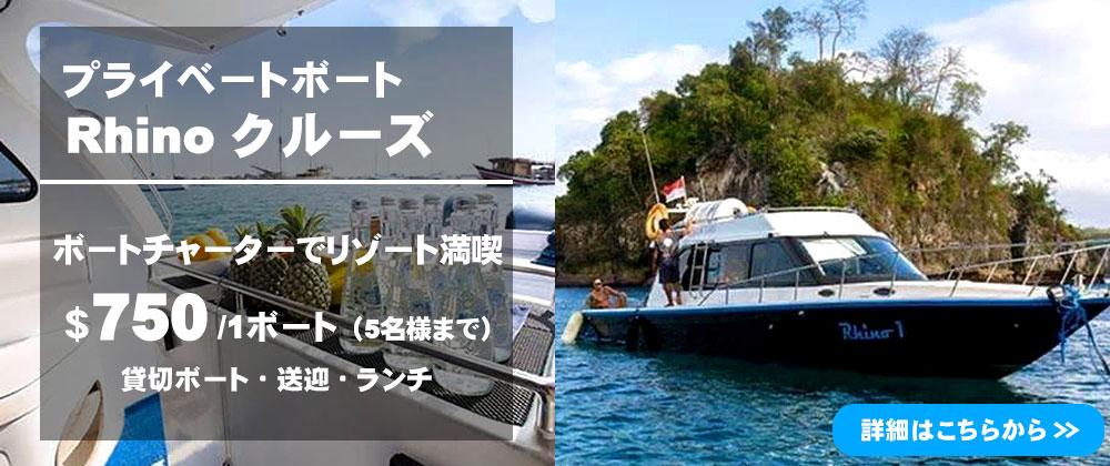 バリ島 Rhino クルーズ