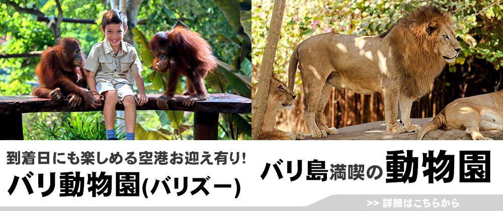 到着日 バリ動物園