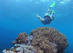 ヌサペニダ島3