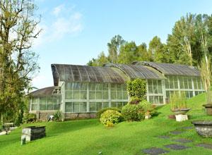 バリ植物園