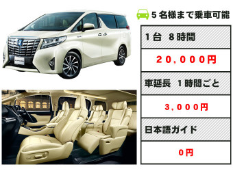 kt-high-alphard-eye