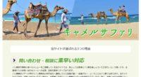 キャメルサファリスペシャルページ公開しました!白砂ビーチをラクダに乗って優雅にお散歩!白い砂浜と青い海のコントラストが美しい、バリ島の人気リゾート・ヌサドゥアで催行しているキャメルサファリ!キレイなビーチをラクダに乗って...