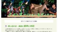 ナイトズー(ショー&ディナー)スペシャルページを公開しました!昼間とは違う夜行性動物に出会える夜の動物園を満喫出来るパッケージ!バリ島のウブド手前、スカワティに位置するバリ動物園(バリズー)は、大人も子供も楽しめる動物園...