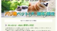 ペット(犬、猫等)移住ページを公開しました!バリ島移住者の中には、日本からペットと一緒に移住したい、日本に置いてきたペットをバリ島の自宅へ呼びたい、という方も多いのが現状です。しかし、狂犬病発生地域に指定されているバリ島...