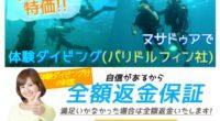 ヌサドゥアde体験ダイビング(バリ ドルフィン社)ページを公開しました!バリ島ヌサドゥア・タンジュンベノアの海でライセンス不要の体験ダイビング!バリドルフィン社が催行している体験ダイビング!ダイビングライセンスの無い方や...