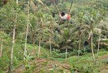 絶景!テガラランのインスタ映えポイントでブランコ!Uma Pakel Bali Swing |