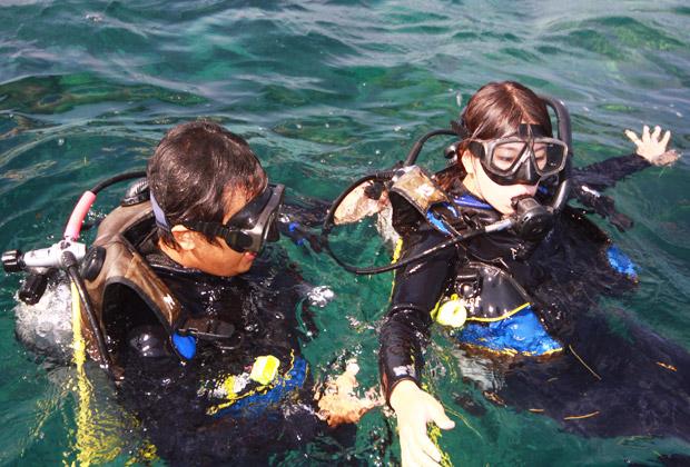 ダイビング利用規約