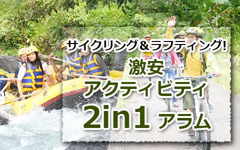 トキメキバリ島観光 厳選アクティビティ 激安アクティビティ2in1 アラム社