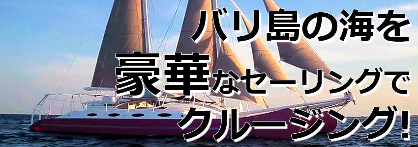 トキメキバリ島観光 厳選 Aneecha Catamaran クルーズ 特徴