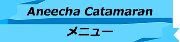 トキメキバリ島観光 厳選 Aneecha Catamaran クルーズ メニュー
