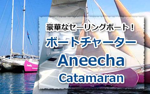 トキメキバリ島観光 厳選 Aneecha Catamaran クルーズ
