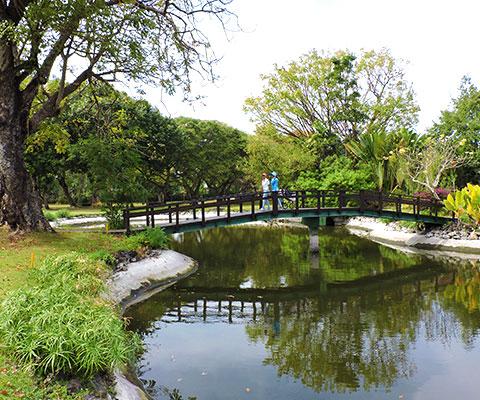 バリ島らしい木々が生い茂るコース