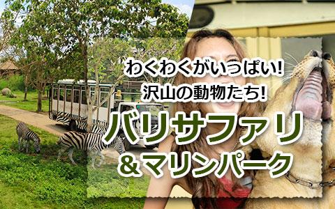 トキメキバリ島観光 厳選動物ふれあい バリ サファリ&マリンパーク
