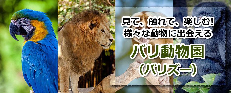 トキメキバリ島観光 厳選動物ふれあい バリ動物園(バリズー)