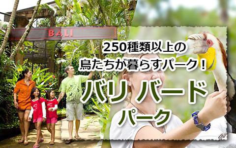 トキメキバリ島観光 厳選 バリ バード パーク