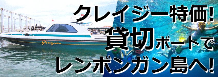 トキメキバリ島観光 厳選マリンスポーツ レンボンガン島往復貸切ボート 特徴
