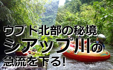 トキメキバリ島観光 厳選アクティビティ キャニオンチューブ 特徴