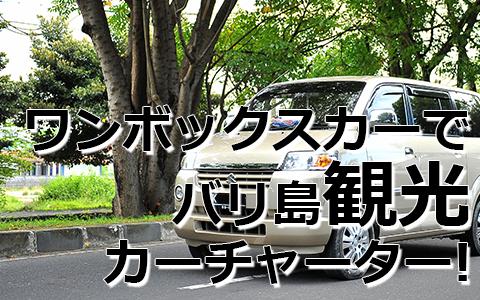 トキメキバリ島観光 厳選カーチャーター スズキ APV 特徴