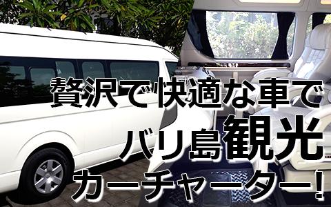 トキメキバリ島観光 厳選カーチャーター ハイエース特別仕様車 特徴