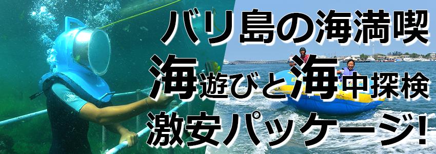 トキメキバリ島観光 厳選マリンスポーツ シーウォーカー・パッケージ7in1 バリ ドルフィン社 特徴