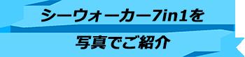 トキメキバリ島観光 厳選マリンスポーツ シーウォーカー・パッケージ7in1 バリ ドルフィン社 写真で見る