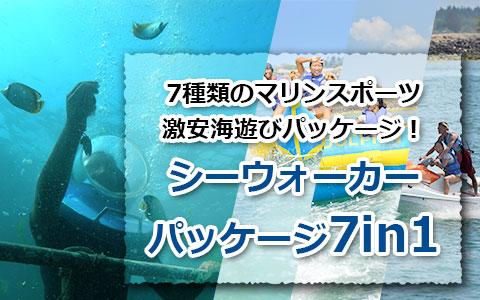 トキメキバリ島観光 厳選マリンスポーツ シーウォーカー・パッケージ7in1 バリ ドルフィン社