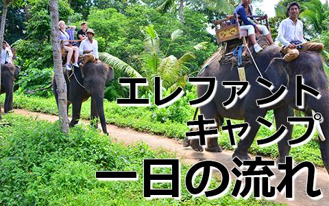 トキメキバリ島観光 厳選動物ふれあい エレファントキャンプ 一日の流れ