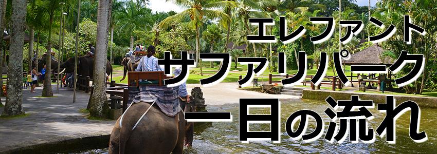 トキメキバリ島観光 厳選アクティビティ エレファントサファリパーク 一日の流れ