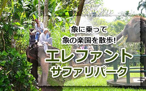 トキメキバリ島観光 厳選アクティビティ エレファントサファリパーク