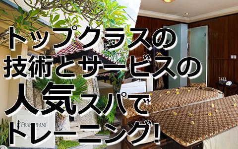 トキメキバリ島観光 厳選 フランジパニ スパスクール 特徴