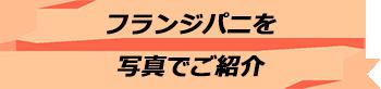 トキメキバリ島観光 厳選 フランジパニ スパスクール 写真で見る