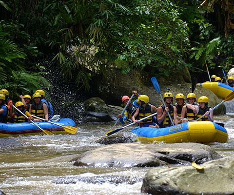 大自然の緑が美しい景色が特徴の川