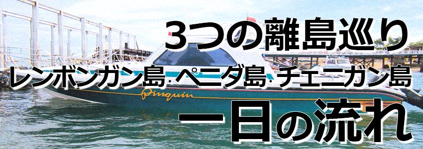 トキメキバリ島観光 厳選レンボンガン島 3つの離島巡り レンボンガン島、ペニダ島、チェニガン島 一日の流れ
