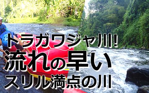 トキメキバリ島観光 バリジャングルアドベンチャーパーク 特徴