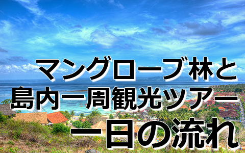 トキメキバリ島観光 厳選レンボンガン島 マングローブ林とレンボンガン島まるごと一周観光ツアー 一日の流れ