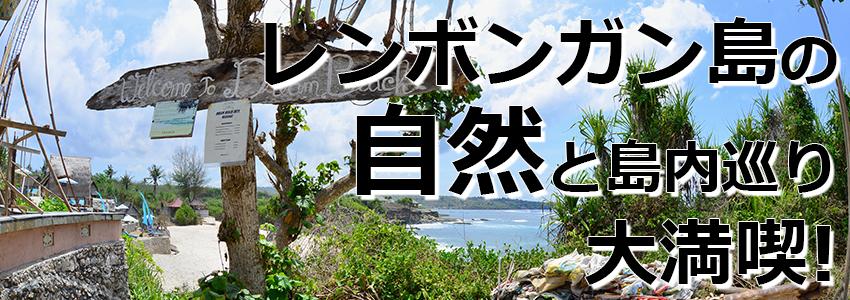 トキメキバリ島観光 厳選レンボンガン島 マングローブ林とレンボンガン島まるごと一周観光ツアー 特徴
