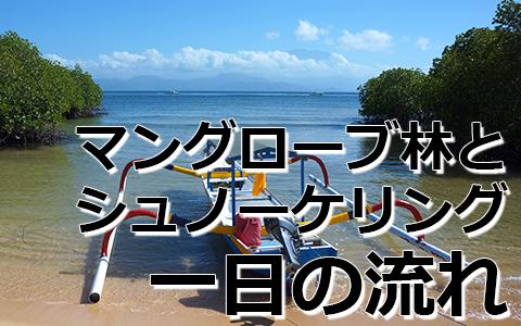 トキメキバリ島観光 厳選レンボンガン島 マングローブ探検とシュノーケリングツアー 一日の流れ