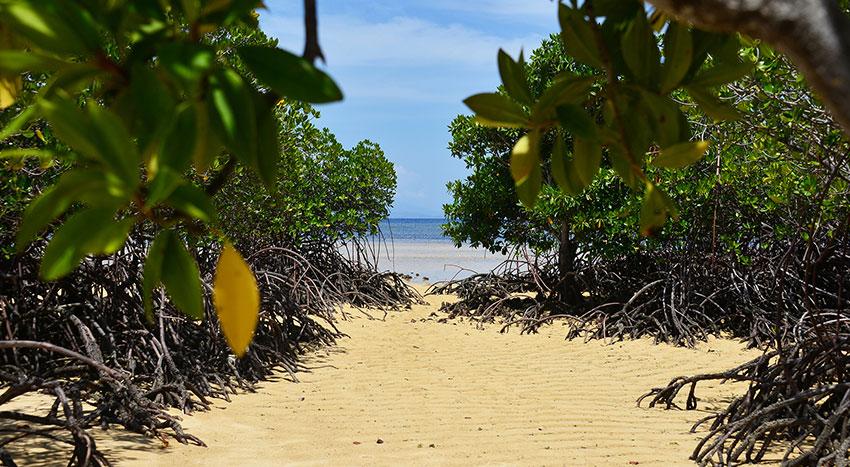 バリ島とはまた違った景色を楽しめます