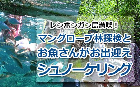 トキメキバリ島観光 厳選レンボンガン島 マングローブ林とサンゴ礁とお魚さんがお出迎え「シュノーケリング」ツアー