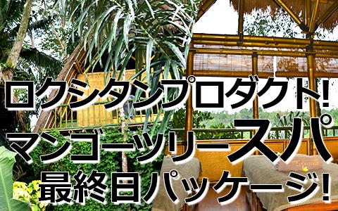 トキメキバリ島観光 厳選 マンゴーツリースパ 最終日プラン 特徴