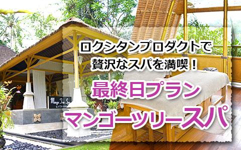 トキメキバリ島観光 厳選 マンゴーツリースパ 最終日プラン