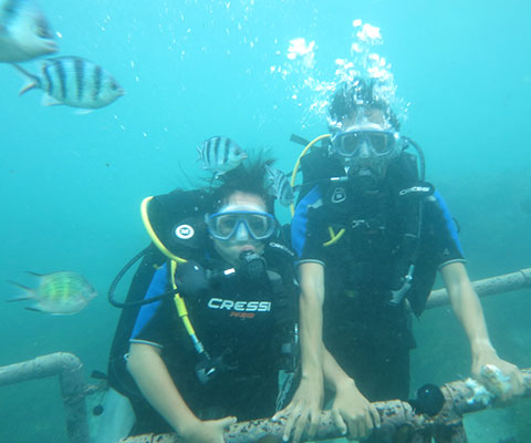 初心者にもおすすめの体験ダイビング