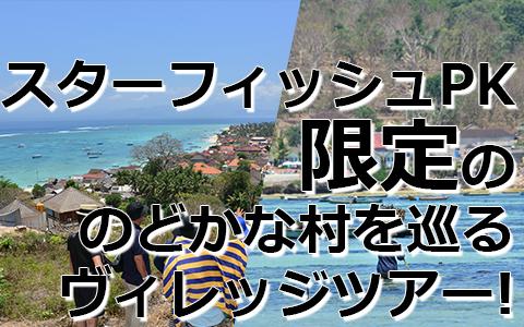 トキメキバリ島観光 厳選レンボンガン島 ヴィレッジツアー 特徴