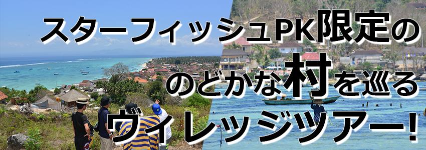 トキメキバリ島観光 厳選レンボンガン島 ヴィレッジツアー特徴