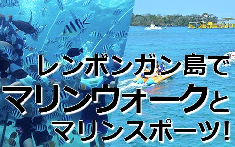 トキメキバリ島観光 厳選レンボンガン島 マリンウォーク 特徴