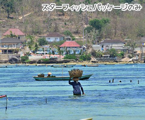 島内を巡るヴィレッジツアーをお楽しみください
