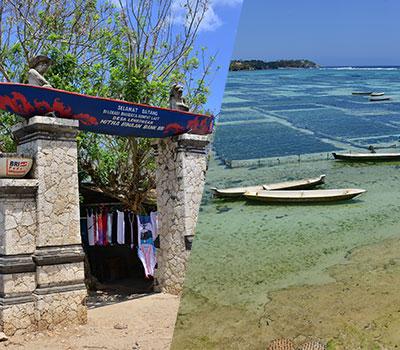 トキメキバリ島観光 厳選レンボンガン島 ヴィレッジツアー 画像