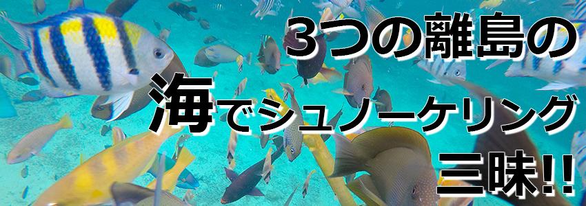 トキメキバリ島観光 特徴