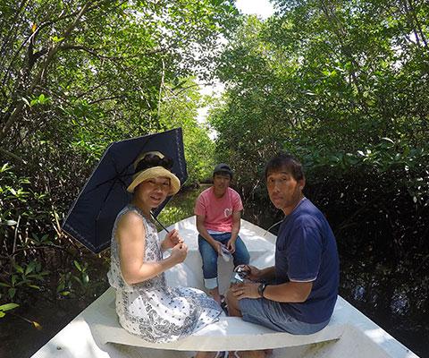 シュノーケリングでトロピカルな熱帯魚を観察