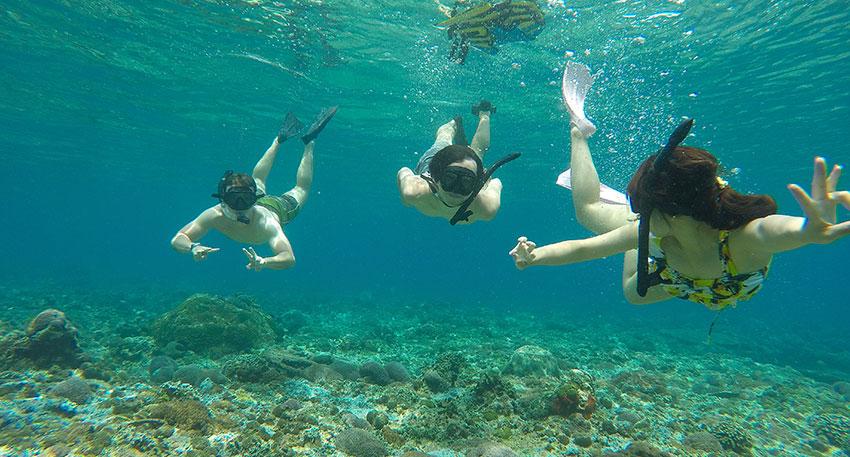 南国ならではの海をお楽しみください